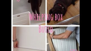 Whelping  Box Build
