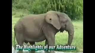Atlas Safaris Uganda (Japanese)