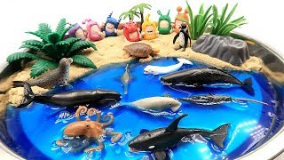 Sea Animals Toys And Diy Beach! Learn Sea Animal Names With Ocean Shark And Dolp