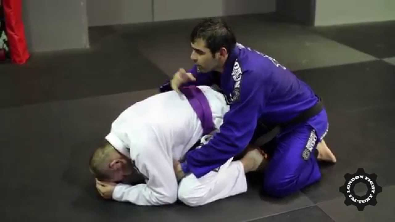 Bjj Turtle Images - Reverse Search