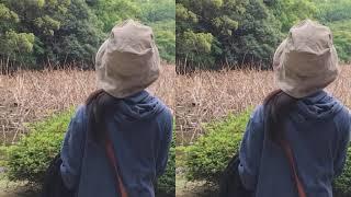 Singer : memy Title : 点描の唄 (feat. 井上苑子) 自分でハモるとちょ...