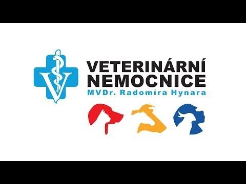 Veterinární Nemocnice