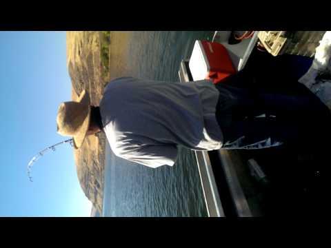 Lower Granite Dam Snake River