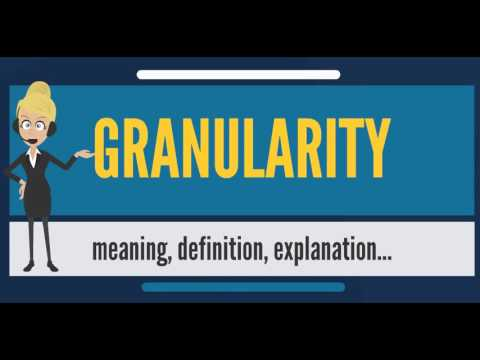 What Is GRANULARITY? What Does GRANULARITY Mean? GRANULARITY Meaning, Definition & Explanation