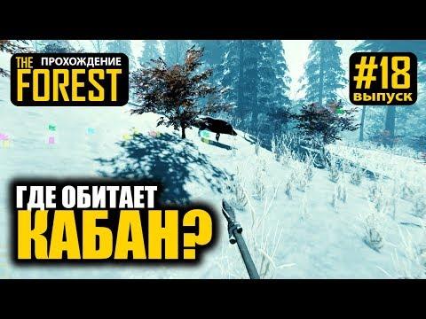 the forest - где найти кабана? - прохождение - merkalex - #18