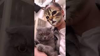 When cats meet cat filters....