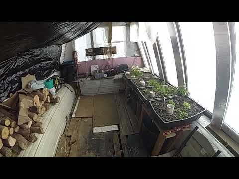 solar/wind turbine,aquaponics green house