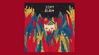 Szatt - Digitown [Flirtini Records]