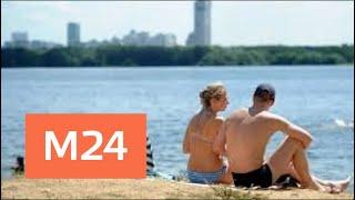 Смотреть видео Вода в московских водоемах прогрелась до +15 градусов - Москва 24 онлайн