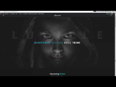One click import Lucille demo - Lucille WordPress Music Theme