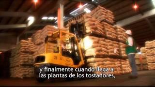 UTZ Certified Farms in Colombia Coffee
