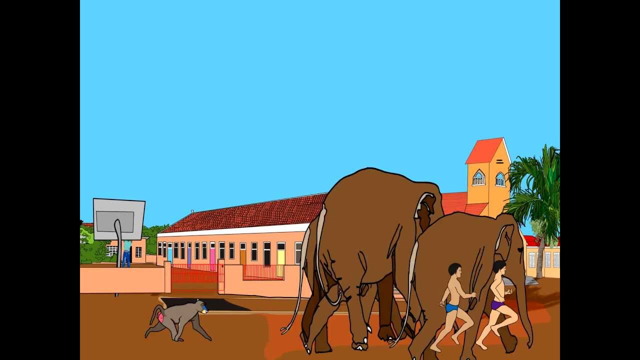 Animal Stampede At The Church Of Jandoret Curacao Youtube