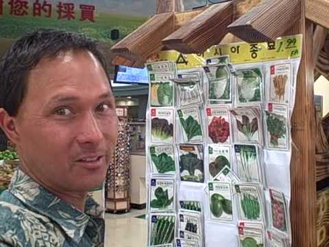 Buying Seeds at an Asian Grocery Store to Increase the Genetic Diversity in your Garden