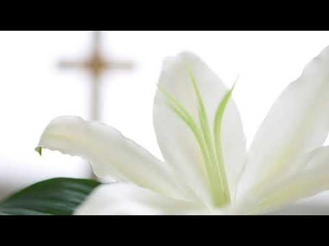 Musica funerale Merate