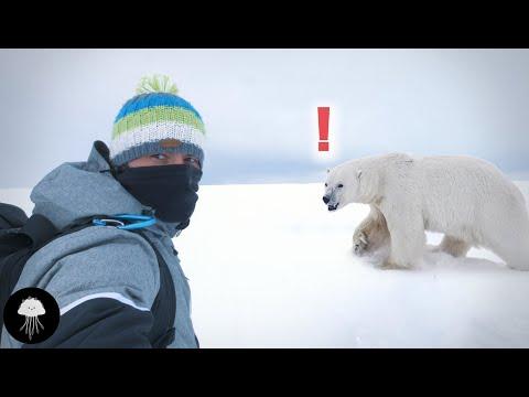 Les mystères du réchauffement climatique à venir - DBY #58