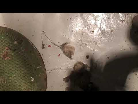 Sewer power rodding