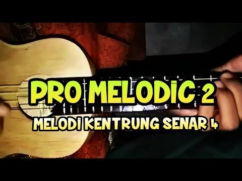 PRO MELODIC 2