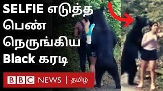 Viral Video: திக் திக் நிமிடங்கள் – Selfie எடுக்கும் பெண்ணை நெருங்கிய கரடி   Bear   women