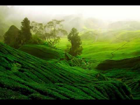 Fotomurales de paisajes youtube for Fotomurales pared paisajes