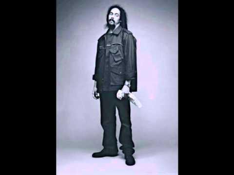 Damian Marley 2011