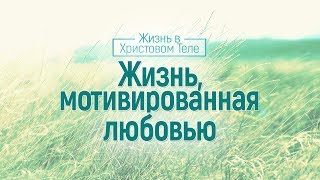 Жизнь, мотивированная любовью (Алексей Коломийцев)