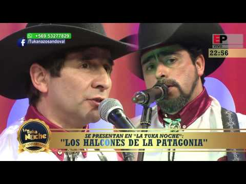 LOS HALCONES DE LA PATAGONIA PARTE 1