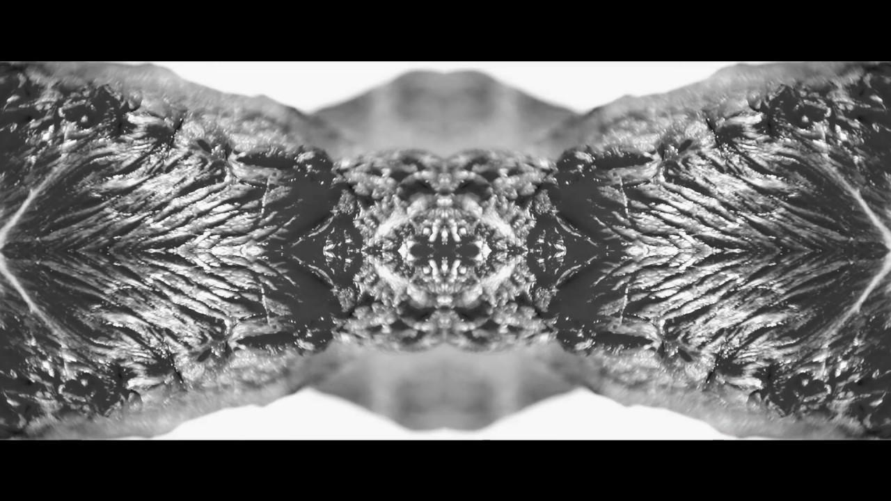 polvo-carne-suelta-lyric-video-polvo