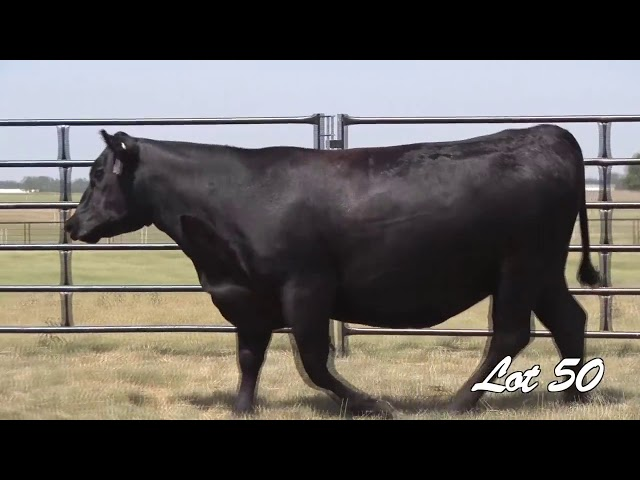 Pollard Farms Lot 50
