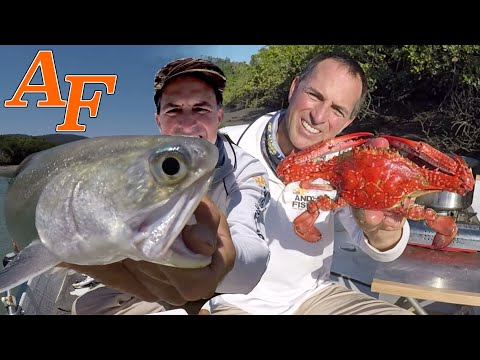 Catch And Cook Steamed Crab W Tackle Club Fishing Challenge EP.455