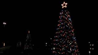 LED Christmas Lights at Dallas Fair Park 2008