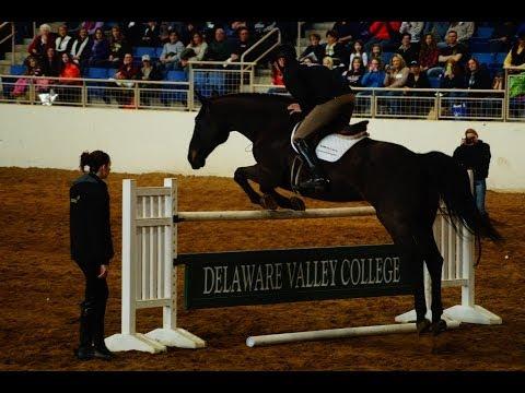 Horse World Expo PA