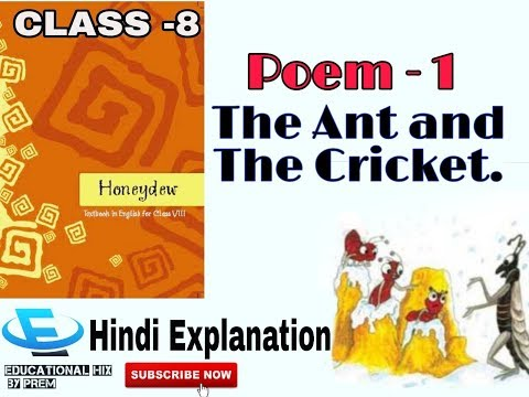 NCERT Class 8 - Poem 1   Honeydew   The Ant And The Cricket  Hindi Explanation
