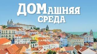 видео вид на жительство в португалии