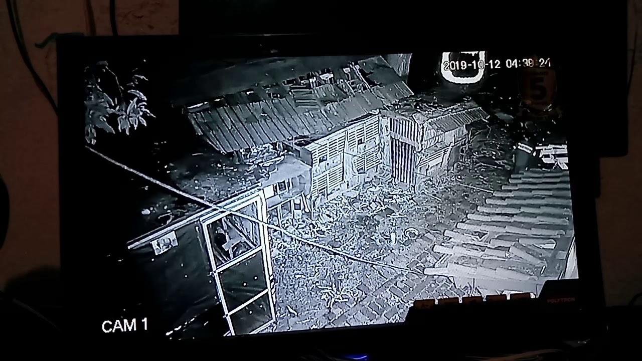 Terekam kamera CCTV pencurian burung merpati senilai 10