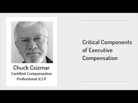 ExecuNet -  Critical Components of Executive Compensation