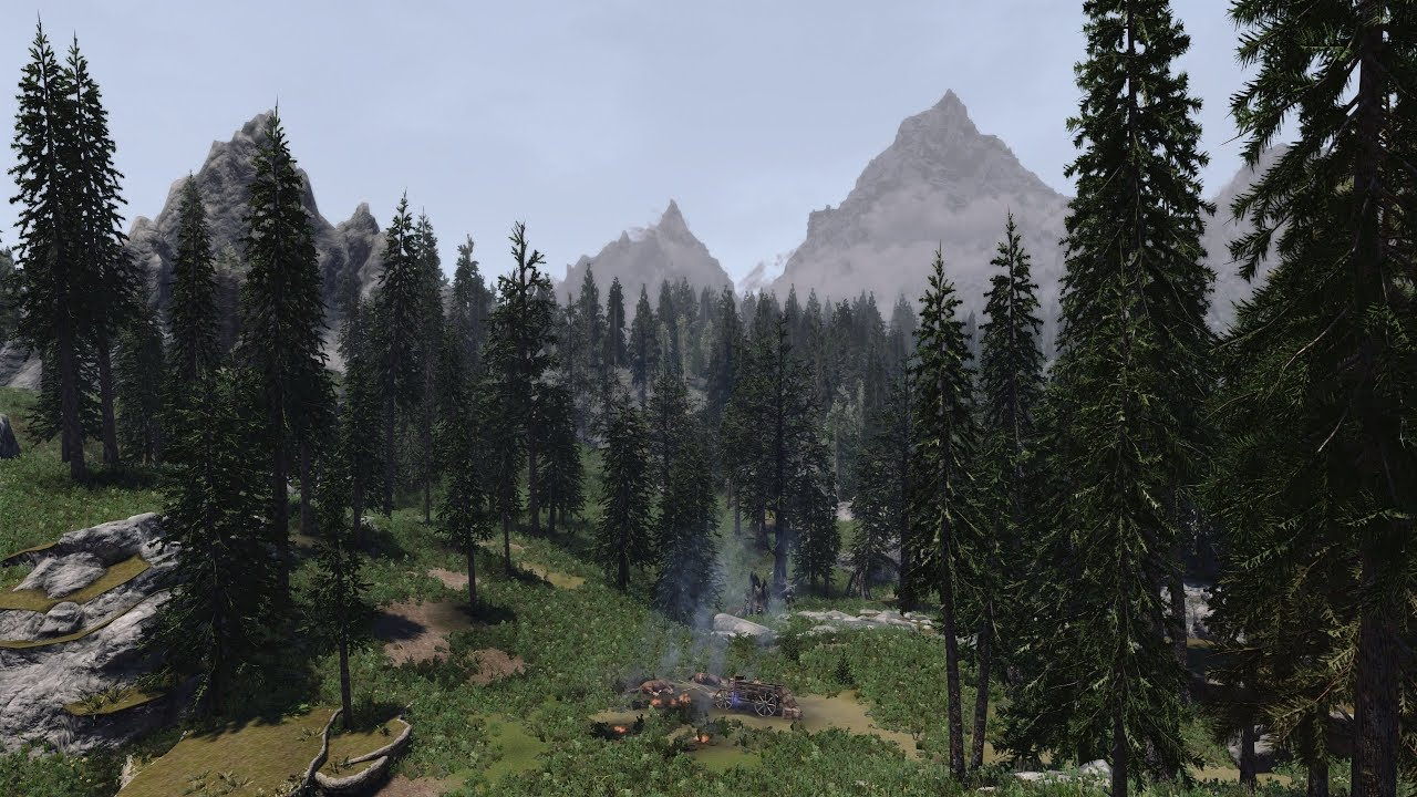 Skyrim 3d Trees And Plants Dyndolod 3d Ultra Trees Skyrim Se 2019 Ultra Modded Youtube