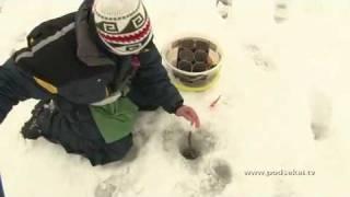 Кубок Москвы по спортивной ловле рыбы на мормышку 2010.mp4