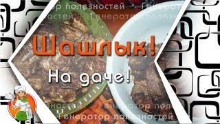 Мы на Даче. Рецепт. Шашлык из свинины с киви. Шашлык из курицы в соевом соусе. Просто объедение!!!))
