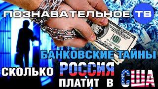 Банковские тайны: Сколько Россия платит в США? (Познавательное ТВ, Дмитрий Еньков)(, 2014-11-12T09:48:29.000Z)
