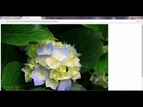 HTML (resim Bağlantısı Yapma)