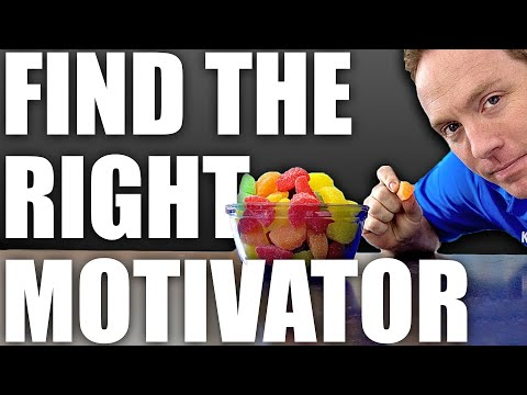 Teach A Dog To Come When Called - Professional Dog Training Tips
