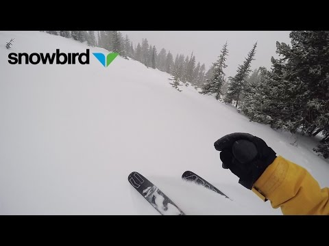 1 Month. 9 Feet of Snow. This Season Rules.