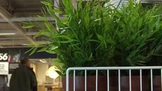 IKEA i Haparanda tjänar på svag krona