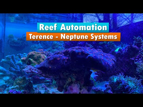 Saltwater Aquarium Automation - With Terence From Neptune Systems Aka Apex