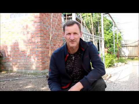 видео: Увядание листьев томата и огурца №1