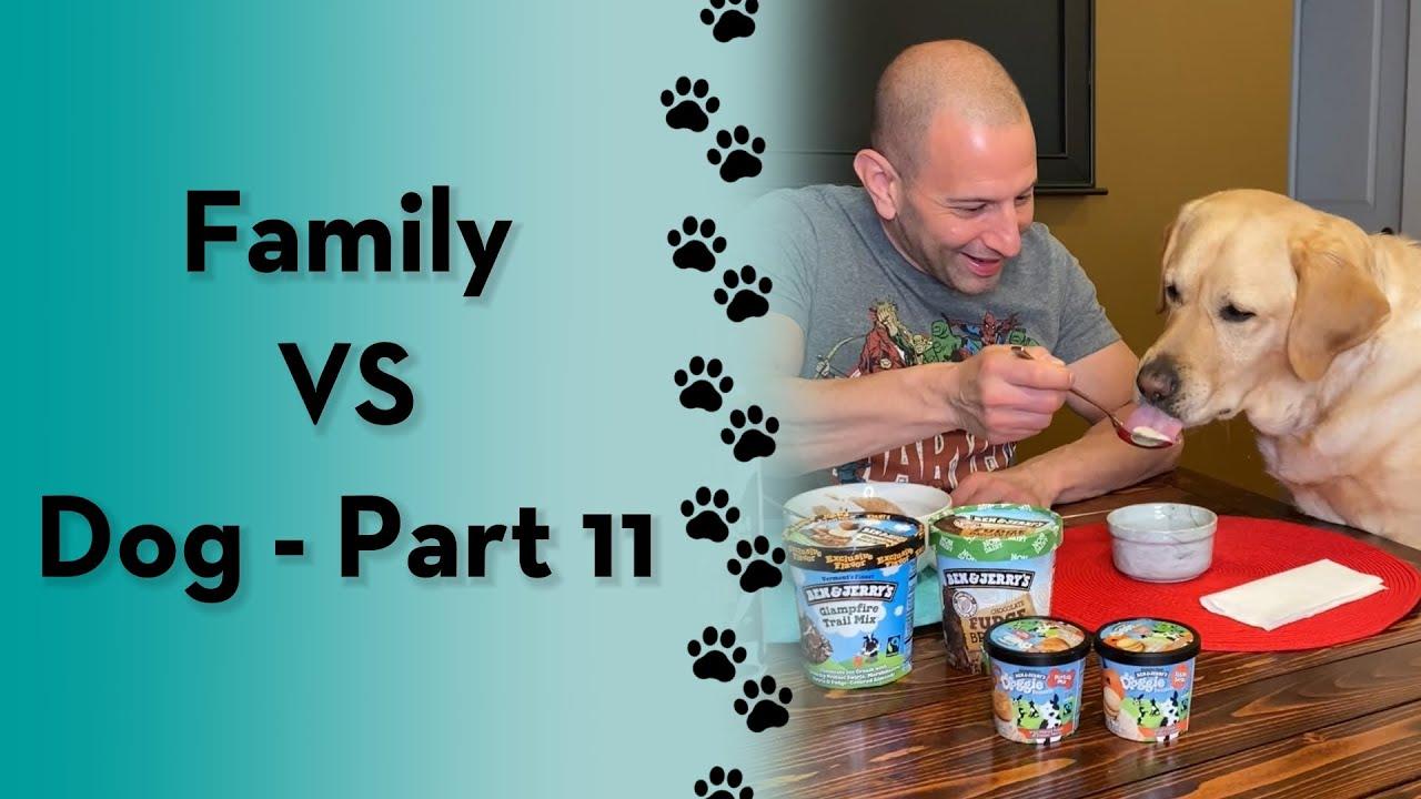 Family VS Dog - Part 11 😂 #shorts