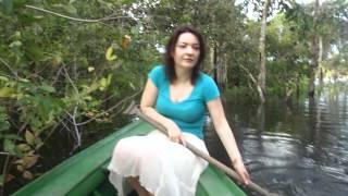 Jungles in Manaus