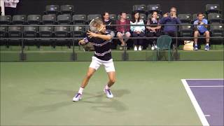 Grigor Dimitrov Forehand In Slow Motion 2019