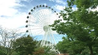 Fresh, Green, Nature beauty of Ouchi Park, South korea