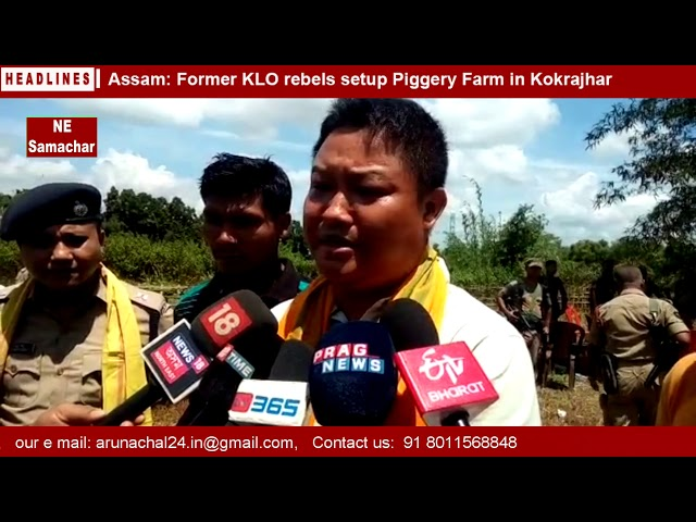 Assam - Former KLO rebels setup Piggery Farm in Kokrajhar  final